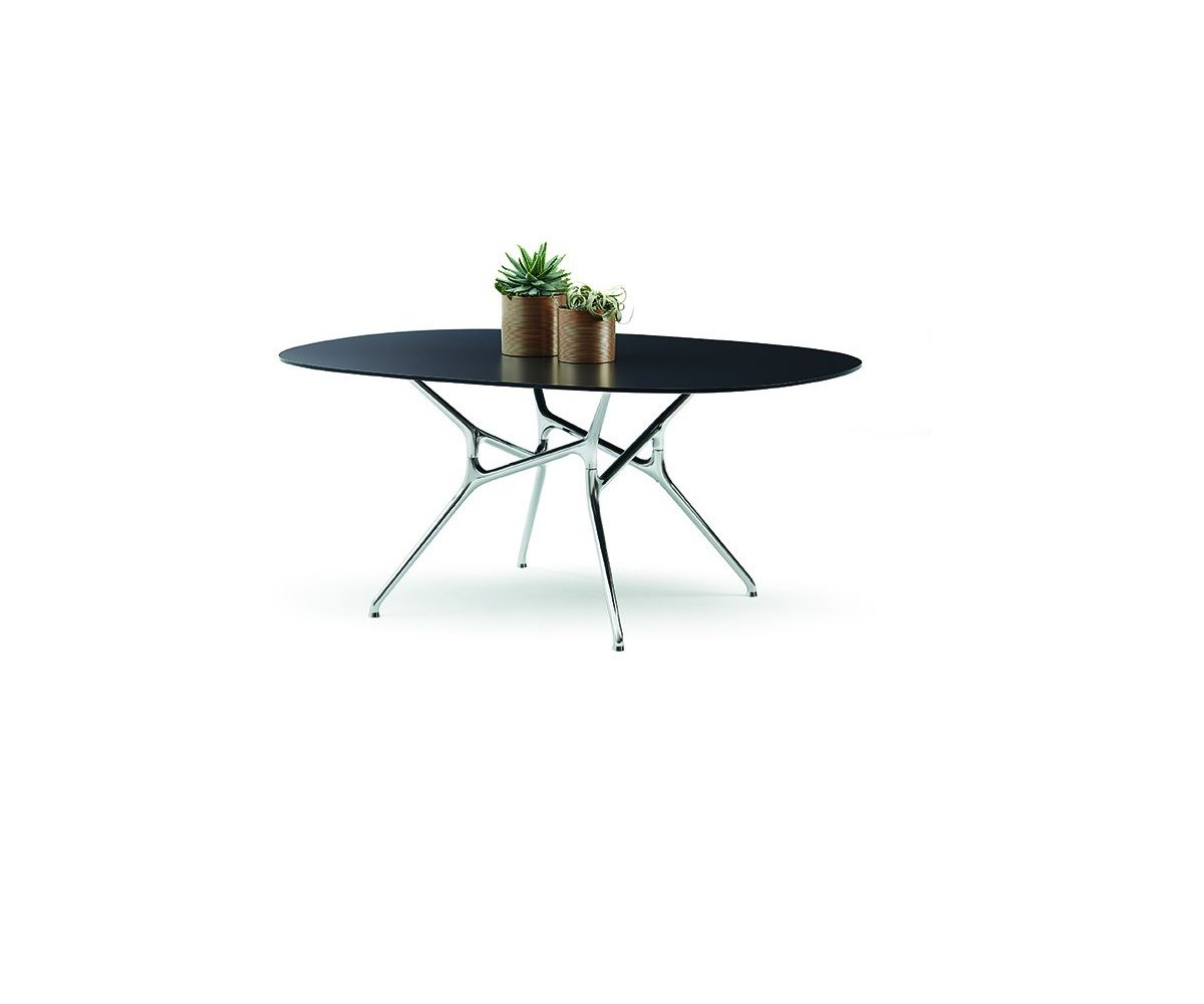 Cappellini Wagner Branch Table Clear