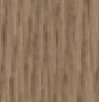 Fossil Oak NTF