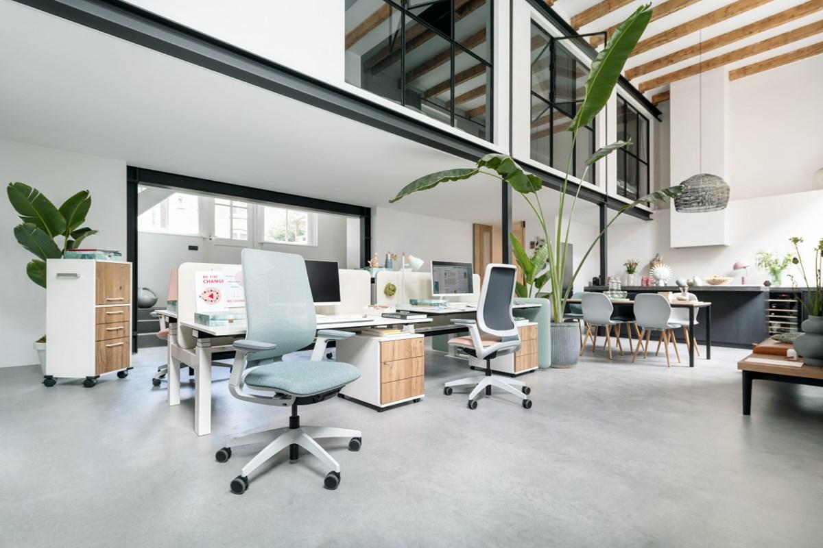 Sedus-Se:flex-Task-Chair-Matisse-3